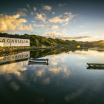 Malt Whisky and Scottish Wildlife Cruise