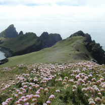 St Kilda: A Wildlife Cruise to the Outer Hebrides